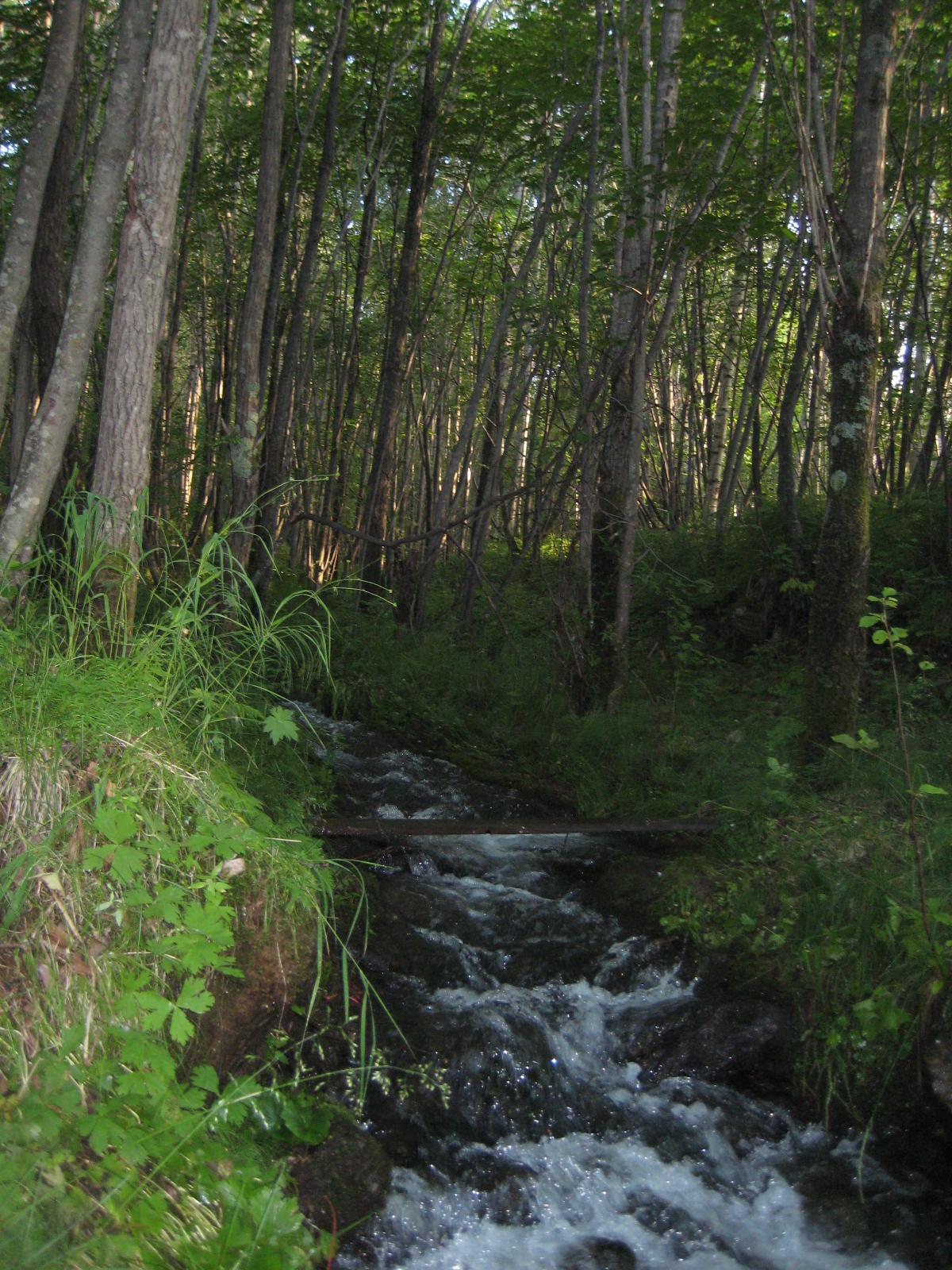Горный ручей в Байкальске