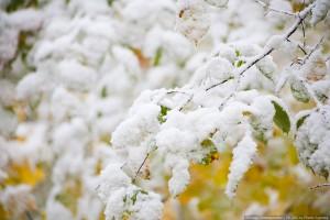 первый снег на байкале